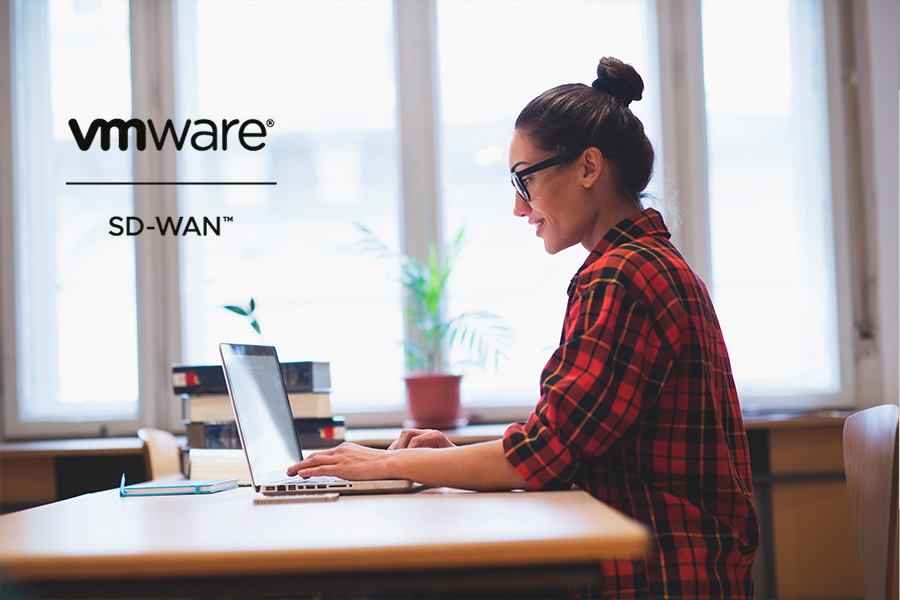 Secure access with VMware